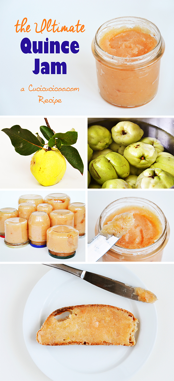 A recipe from a classic Italian cookbook gets a modern makeover. Find out how to make quince jam or jelly with less effort and more taste! A great gift!