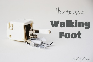 walking foot 1