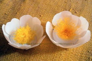 Primrose flowers from yogurt cups | www.cucicucicoo