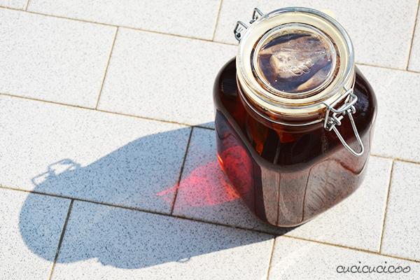 Questo tè freddo è buonissimo e non si deve neanche bollire l'acqua quando si prepara sotto il sole! Come fare il te freddo in casa... con o senza cottura! Una ricetta per una bevanda naturale e rinfrescante su www.cucicucicoo.com