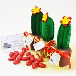 Tutorial: Handmade felt cactus party favor with cards & box
