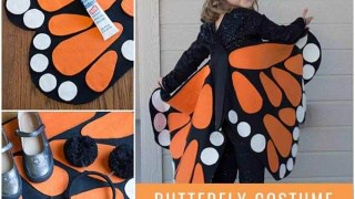 Adorable No Sew Butterfly Costume